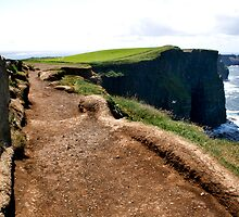 Cliffs of Moher by Maureen  Geraghty