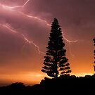 The last storm by Brian Edworthy