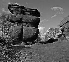 The Idol - Brimham Rocks by Weirdfish695