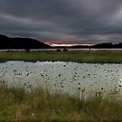Bassenthwaite Lake by Rich Gale