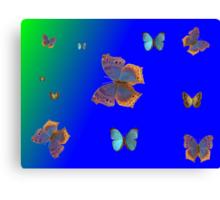 Butterflies Butterflies! Canvas Print