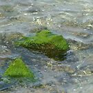 Mossy Rock by Alison Howson