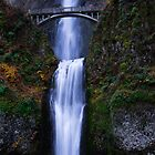 Multnomah Falls by kotybear