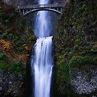 Multnomah Falls by kotybear