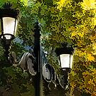 Sweet, Old-Fashioned Streetlights - Impressions of Fall by Georgia Mizuleva