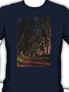 Dark Hedges Canopy T-Shirt