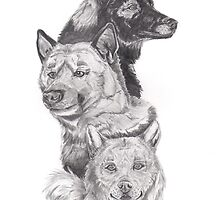 Dogs by Caroline Smalley