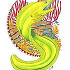 Moray Eel by JohnMeszaros