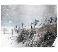 Snowy Skies Poster