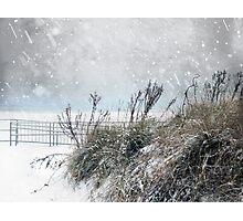 Snowy Skies Photographic Print