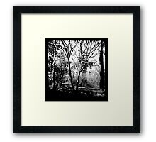 Mysterious Enchantment Framed Print