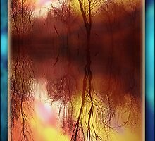 Seasons.  by DaveBassett
