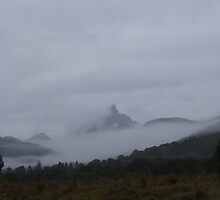 Mist Shrouded Mt Warning by Cathie Sherwood