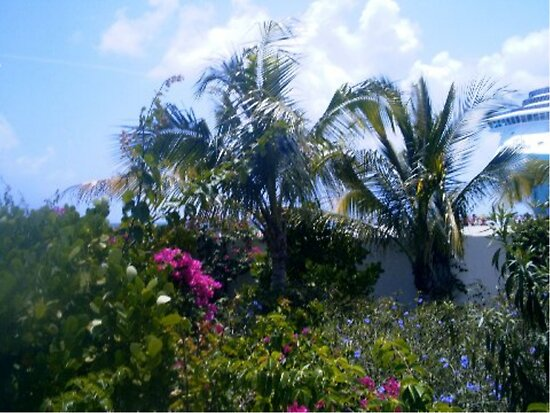 Garden in Paradise by Holly Martinson