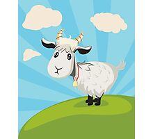 Goat on Lawn Photographic Print
