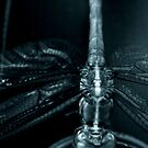 Blue Metallic Dragonfly by Michael Reimann