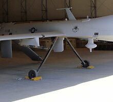 Predator UAV by Robert Phelps