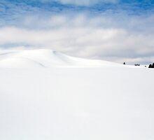 Snow Dunes by LarryGambon