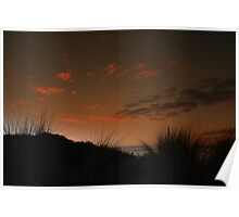 Sunset Coastal Grass Poster