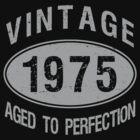 Vintage 1975 Birthday by thepixelgarden