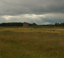 Culloden Moor with the Grave Markers for clans by Suzanne Forbes-Murray