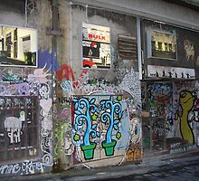 Alley Windows and Doors by Lesley  Hill