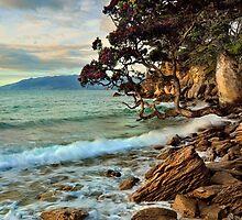 Waitete Bay Pohutukawa Dusk by Ken Wright