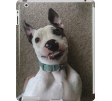 Silly Pitbull iPad Case/Skin
