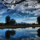 Artistic Sky by Barbara Manis
