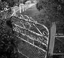 The front gate by Bernadette Maurer