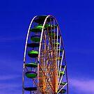 Enjoy the Ride by Judi Taylor