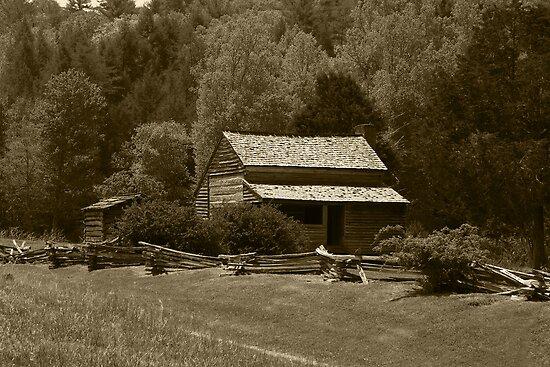 Dan Lawson Place III by Gary L   Suddath