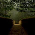 Path by taylorswift