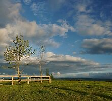 Moments before You Left Waikato by Peter Kurdulija