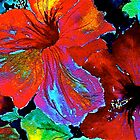 Tropics...Hibiscus by  Janis Zroback