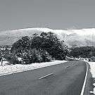 Snow Road by Faith Barker Photography
