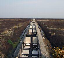 Peat train by John Quinn