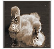 Abraham And Balthazar - Siblings In Sepia Photographic Print