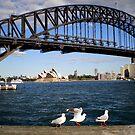 3 Birds and Bridge by Vee T