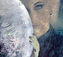 The Veil Of Negative Thoughts by Stephanie Rachel Seely