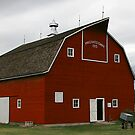 Pritchard Barn, Kansas by Patricia Montgomery