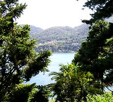 Another view of Lake Como by hilarydougill