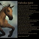 Unbroken Spirit by Abeque  Wikimac