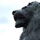 Lions Pride  by Gemma27