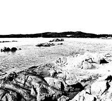 Island Caprera: sea landscape and rock by Giuseppe Cocco