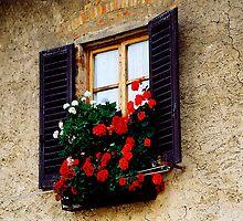 Castellini de Chianti,Italy by Rosina  Lamberti