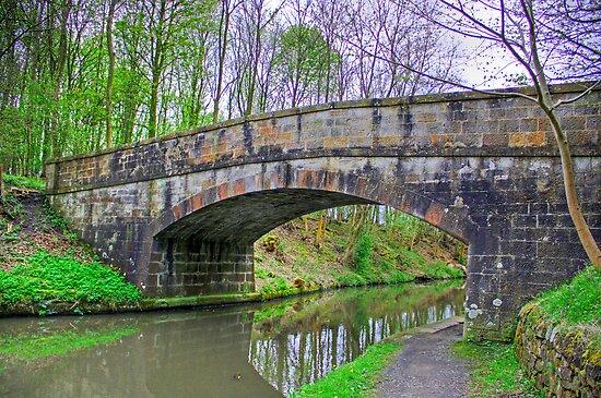 Canal Bridge II by Tom Gomez