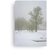 Foggy Morning Landscape (2) Canvas Print