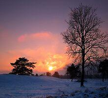 Sunset in Snowlandscape by ienemien