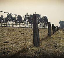 Smoky country by Bernadette Maurer